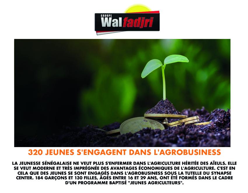 320 jeunes s'engagent dans l'agrobusiness